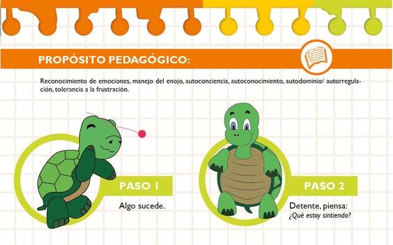 Imagen de la tortuga